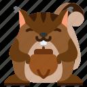 animal, cute, mammal, nut, squirrel