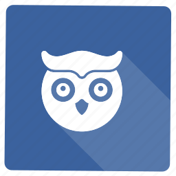 animal, creative, head, information, owl, uil icon