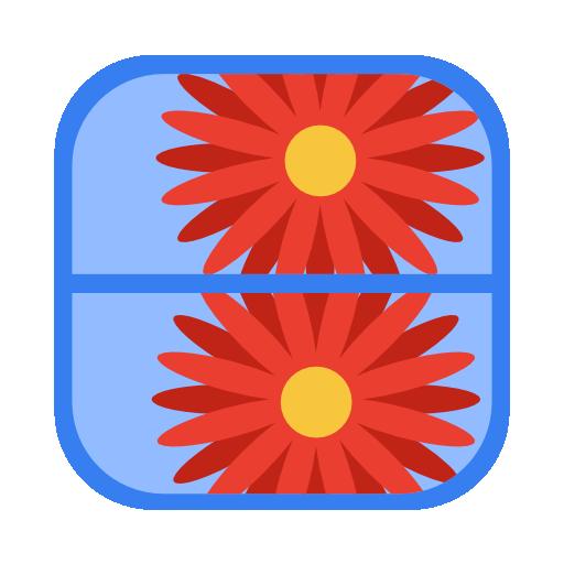 wmm icon