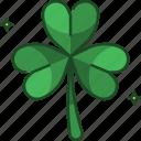 clover, three leaf clover, nature, shamrock, st patricks day, irish, ireland