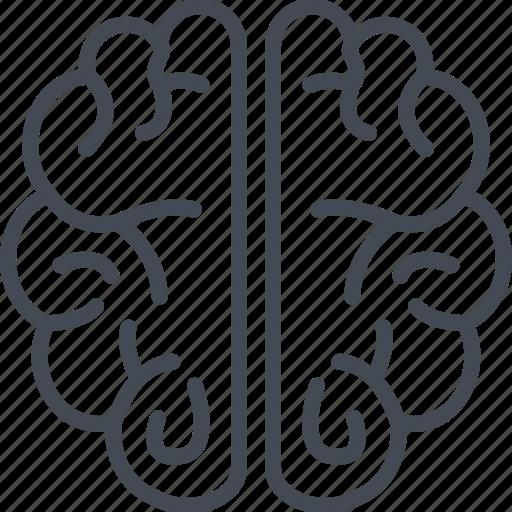 brain, business, human, line, organ, ouline icon