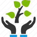 eco, ecology, plant, project, protection, startup, tree icon