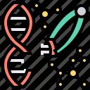 dna, genetic, modification, molecular, science
