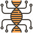 biology, dna, dna structure, education, genetical, medical, science icon