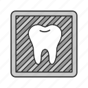 dentistry, diagnosis, radiography, scan, tooth, treatment, x-ray icon