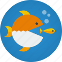 business, competition, competitor, competitors, fish, marketing, win, winning icon