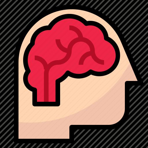 brain, head, idea, psychology, think icon