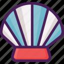 beach, fish, shell, shellfish, summer