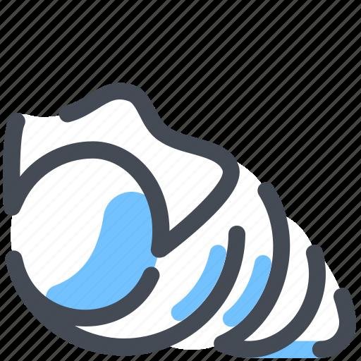 scallop, sea, shell, summer icon