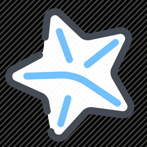 beach, starfish icon