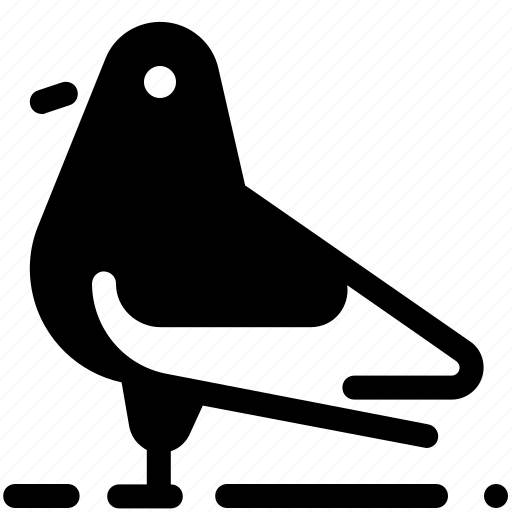 bird, pigeon icon