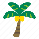 beach, nature, palm, palm tree, plant, summer, tree icon