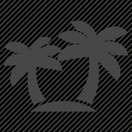 beach, palm, summer icon