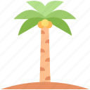 coconut, tree, summer, nature, palm, tropical icon