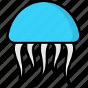 danger, dangerous, jellyfish, medusa, poison, jelly fish, toxic