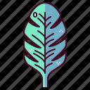 banana, leaf, plant, summer, tourism, vacation, holiday