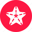 beach, sea, star, star fish, starfish icon