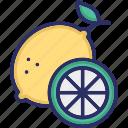 citrus, fruit, juicy fruit, lemon icon