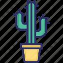 cactus, cactus plant, garden plant, indoor plant icon