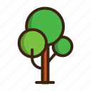 forest, summer, tree icon