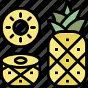 food, fruit, healthy, pineapple, season, summer icon