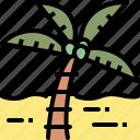 beach, coconut, nature, plam, season, summer, tree icon