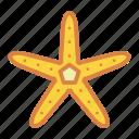 beach, life, marine, star, starfish, summer, vacation icon
