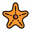 marine, fish, star, sea, ocean