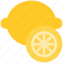 food, fruit, holiday, lemon, summer, travel, vegetable icon