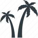 beach, coconut trees, date trees, island, palm, palm trees