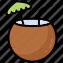 coconut, drink, milk, summer, beach, juice, vacation