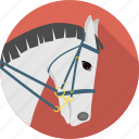 animal, dressage, equestrian, eventing, horse, jumping, ride, riding, sport icon