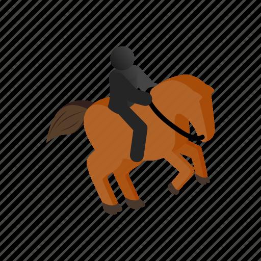 animal, horse, horseback, isometric, nature, stallion, young icon