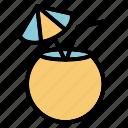 beach, coconuts, drink, summer icon
