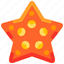 animal, beach, bukeicon, star, starfish, summer icon