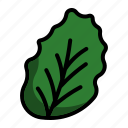 food, greens, leaf, supermarket, vegetable icon