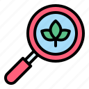 energy, find, leaf, magnifying glass, search, sustainable icon