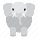 animal, cute, elephant, fat, sweet, wild, zoo icon
