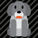 animal, cute, dog, grey, pet, puppy, sweet icon