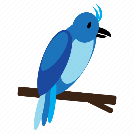 animal, bird, blue, parrot, pet, sweet icon