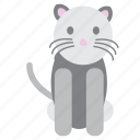 animal, cat, grey, nice, pet, pink, sweet icon