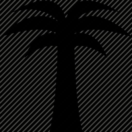 palmtree, travel, tree, tropical, vacation icon