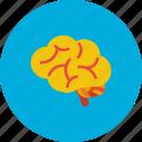 brain, design, idea, modern, object, processor, technology icon
