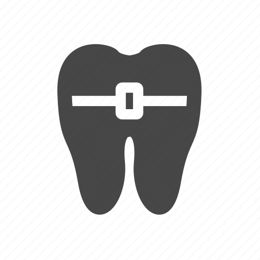 anatomy, bare, tooth icon