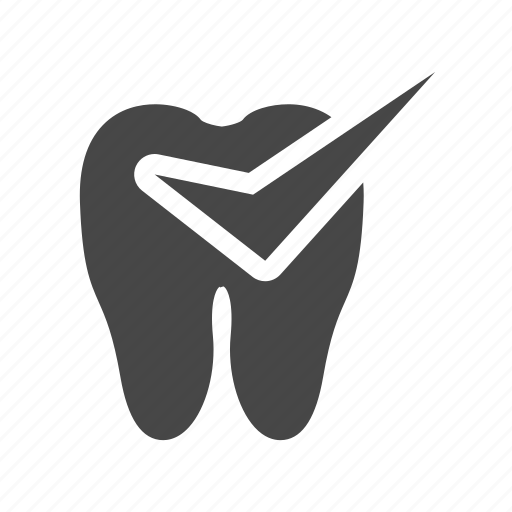 anatomy, check, good, tooth icon