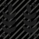 crop, paddy, wheat icon