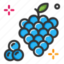 food, fruits, grape, healthy