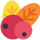 autumn, berry, leaf, leaves, nature, thanksgiving icon