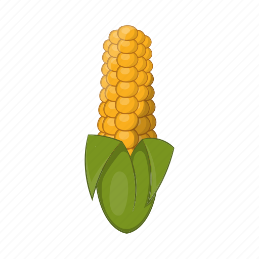 agriculture, cartoon, cob, corn, food, grain, maize icon