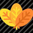 autumn, decoration, fall, leaf, leaf fall, thanksgiving, tree